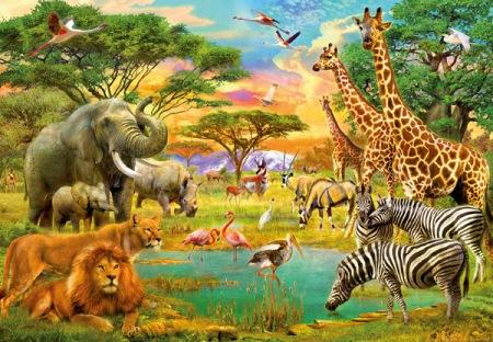 Fotomural Infantil 154 African Animals